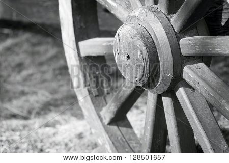 of gray color fragment of a big wooden wheel with spokes for an ancient cartage and for the cart or the vehicle