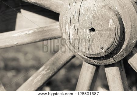 of beige color fragment of a big wooden wheel with spokes for an ancient cartage and for the cart or the vehicle