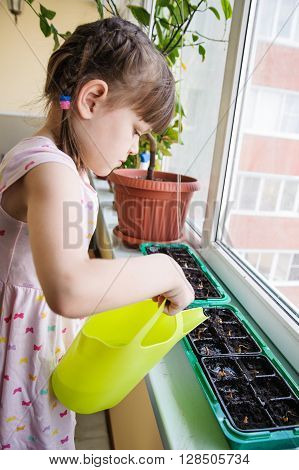 Girl with a pigtail and dress pours from a watering onions in the pan on the windowsill