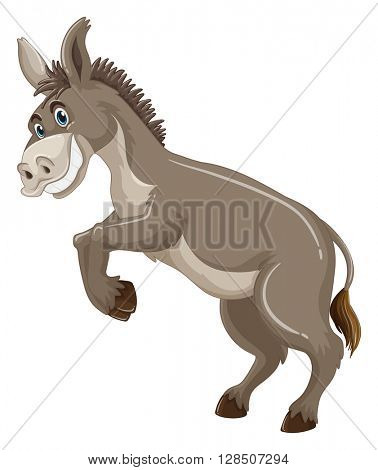 Donkey with gray fur smiling illustration