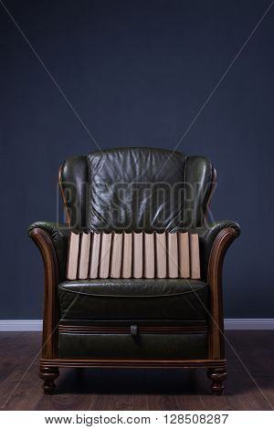 Green Leather Armchair With Books In Front Of The Wall