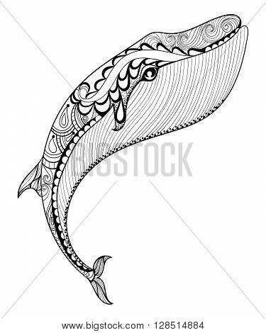 Vector zentangle whale print for adult coloring page. Hand drawn artistically ethnic ornamental patterned illustration. Sea Animal collection. Isolated Sketch for tattoo, posters, t-shirt design.