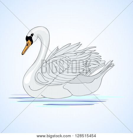Beautiful swan. Aviculture and poultry. Vector illustration.