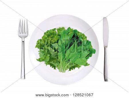 fresh lettuce and sorrel on white plate fork and knife isolated on white background