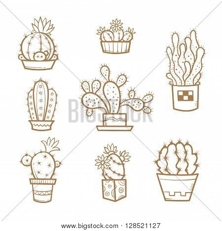 Set different cartoon cacti in pots. Eight species of cacti. Vector image. Doodle style. Transparent background. Contour image.