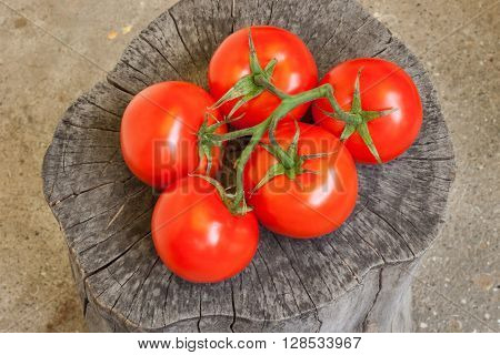 red tomatoes lying on the stump vegetables