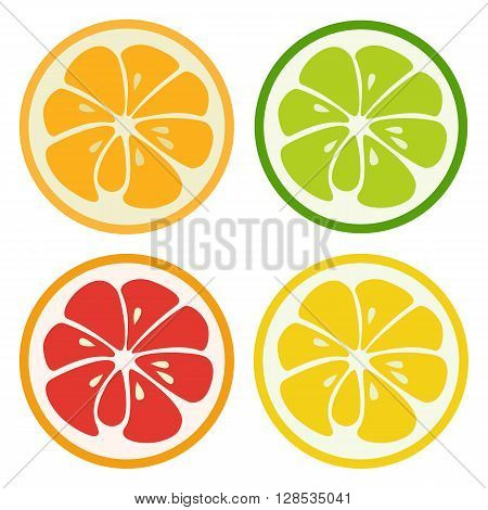 Set of citrus fruits. Lemon, lime, orange and grapefruit isolated on white background. Fresh tasty healthy fruits. Ingredients for juice, lemonade. Juicy freshness. design illustration.