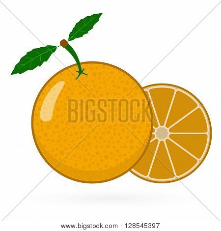 Vector. Orange Isolated, Composition of Orange on white background. Orange icon, fruit set. Juicy Orange, Orange Leaves. Fruit Composition for Packaging Juice, Yogurt and other design. Orange.
