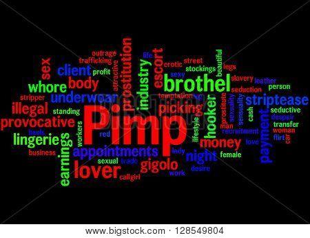 Pimp, Word Cloud Concept 4