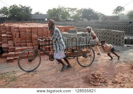 SARBERIA,INDIA, JANUARY 16: Brick field workers carrying complete finish brick from the kiln on a bicycle rickshaw on January 16, 2009 in Sarberia, West Bengal, India.