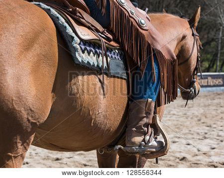 Rodeo equipment for cowgirl or cowboy - boots trousers saddle