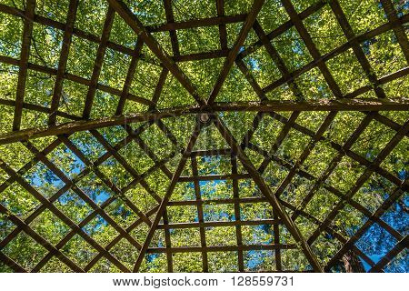 A view from beneath a large wooden gazebo. Patterns emerge.