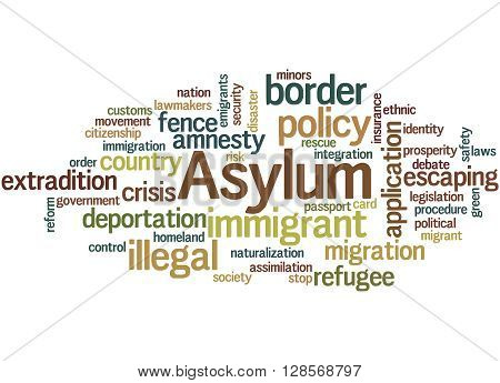 Asylum, Word Cloud Concept 4