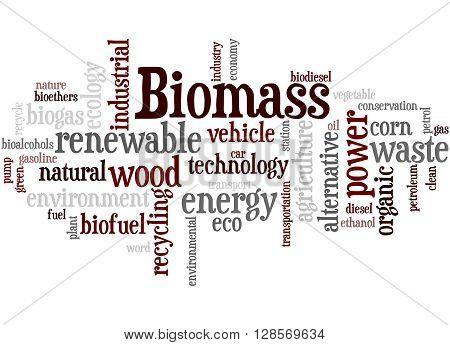 Biomass, Word Cloud Concept 3