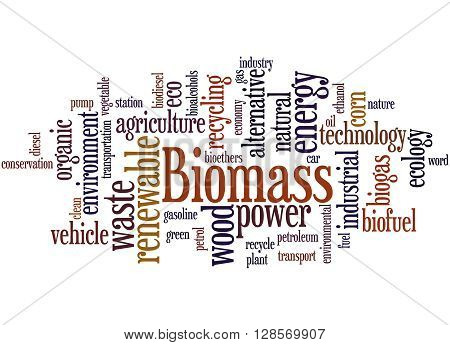 Biomass, Word Cloud Concept 9