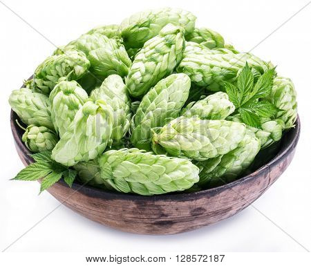 Hop cones in the old wooden bowl. Isolated on the white background.
