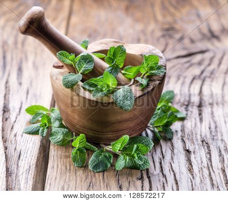 Fresh mint, wooden mortar and pestle on the old table.