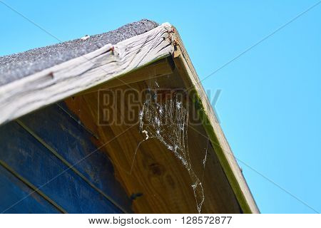 Old roof of a wooden hut with cobweb. ** Note: Shallow depth of field