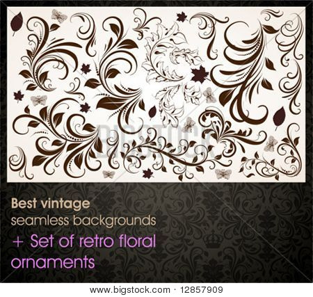 Seamless wallpaper pattern, black + set of floral ornaments for web site or flyer vintage summer design