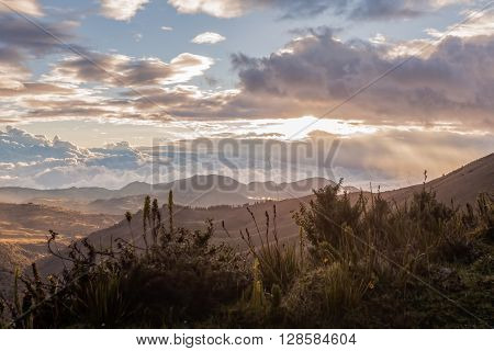 Sunset Alpine Scenery Of The Andean Mountain Ecuador South America