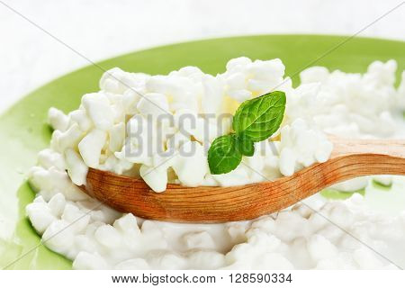 Organic farming cottage cheese in a wooden spoon close up