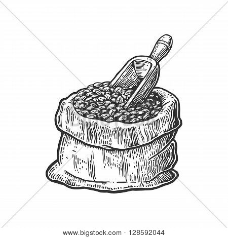 Sack with coffee beans with wooden scoop. Hand drawn sketch style. Vintage black vector engraving illustration for label web flayer. Isolated on white background.