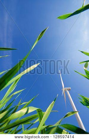 Windmill for electric power production, Pozuelo de Aragon, Zaragoza Province, Aragon, Spain.