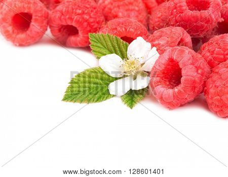 Fresh, ripe raspberries with leaves and flower on white, with copy space