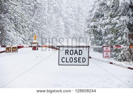 Road closed sign blocking dangerous snow ice weather covered road with covered trees and icy surface