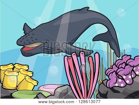 Hunch back whale underwater scenery .eps10 editable vector illustration design