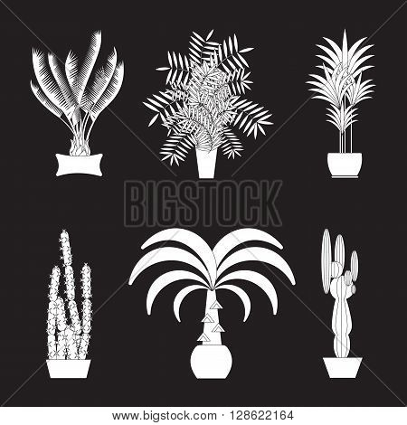 Tropical plants, Set of silhouette potted houseplants.Tropical vector collection of houseplants.Modern Green plant icons, desert nature, floral exotic, tropical flower, Home tropical garden