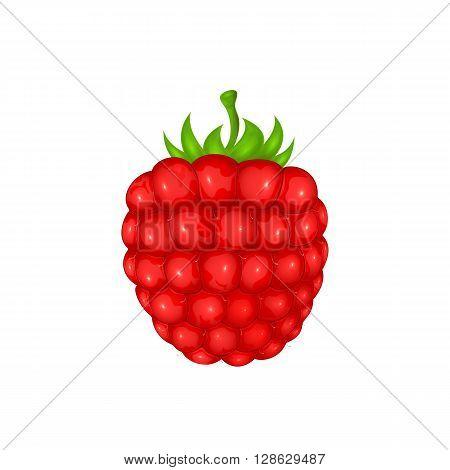Fresh ripe raspberry isolated on white background, illustration.