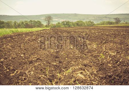 Vintage shot to a plowed land in the summer