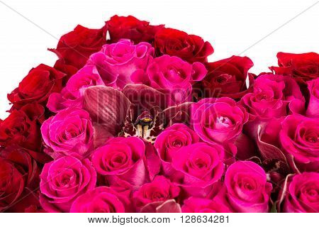 Cymbidium orchid bouquet of pink roses, isolated on white background