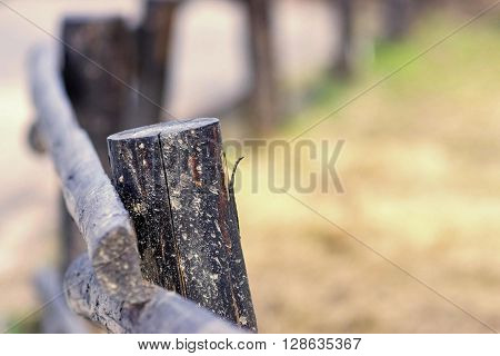 part of an old column and poles from a wooden fence for the ranch closeup on an indistinct background