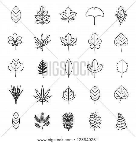 Set of leaves of plants or trees outlines vector icons