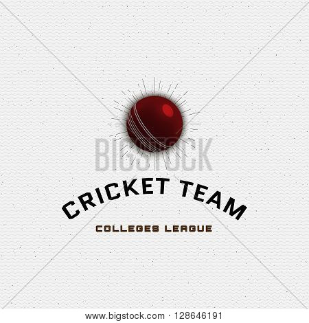 Cricket badges logos and labels can be used for design, presentations, brochures, flyers, sports equipment, corporate identity, sales