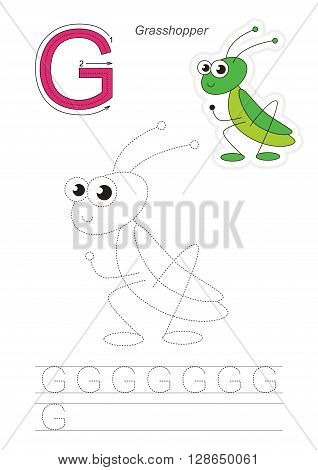 Vector exercise illustrated alphabet. Learn handwriting. Gaming and education. Page to be traced. Kid game. Complete english alphabet. Tracing worksheet for letter G. Grasshopper.