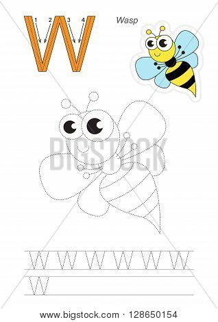 Vector exercise illustrated alphabet. Learn handwriting. Gaming and education. Page to be traced. Kid game. Complete english alphabet. Tracing worksheet for letter W. The wasp.