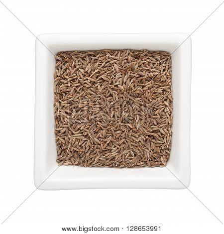 Cumin seeds in a square bowl isolated on white background