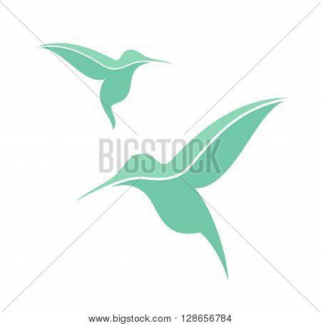 Hummingbird. Exotic birds on white background. (EPS)