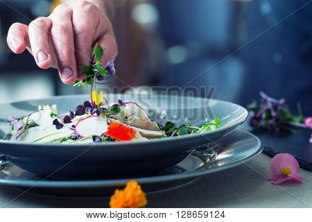 Chef in hotel or restaurant kitchen cooking only hands. He is working on the micro herb decoration. Preparing vegetable salad with pieces of grilled chicken meat - sirloin.