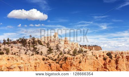 Scenic Landscape In Bryce Canyon National Park.