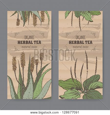 Set of two color vintage labels for aloe and plantain herbal tea. Placed on cardboard texture.