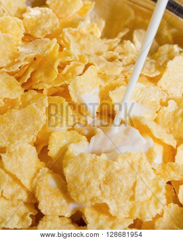 Corn flakes with milk. Healthy eating. Close-up