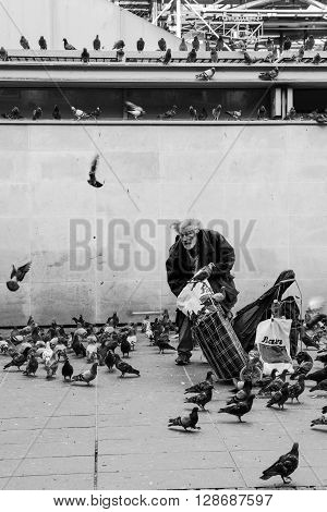 Paris France - August 22 2015: Homeless old man feeding pigeons near the Pompidou Center in Paris in black and white