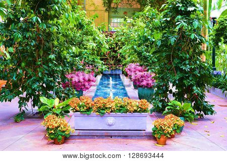 Potted flowers and plants surrounding a pond with fountains taken in a lush green garden