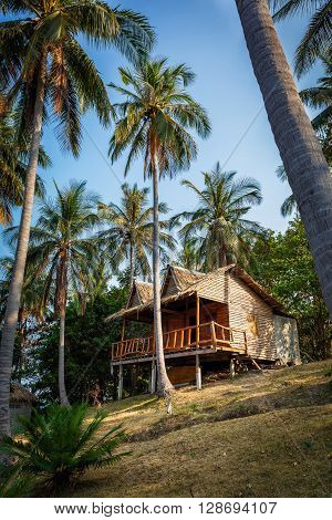 Bungalow near the palm trees and the sea in Thailand
