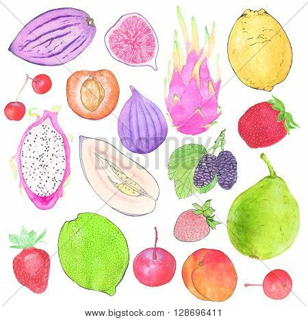 Fruits and berries. Hand drawn set of different fruit - pepino pear, strawberry, mulberry, lemon, fig. Real watercolor drawing