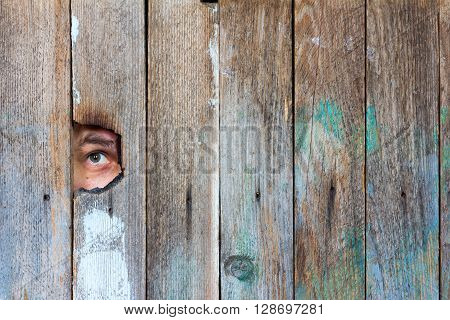 the eyes of a man spying through a hole in an old wooden fence. with space for posting information